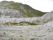 Karrenfeld Alpstein