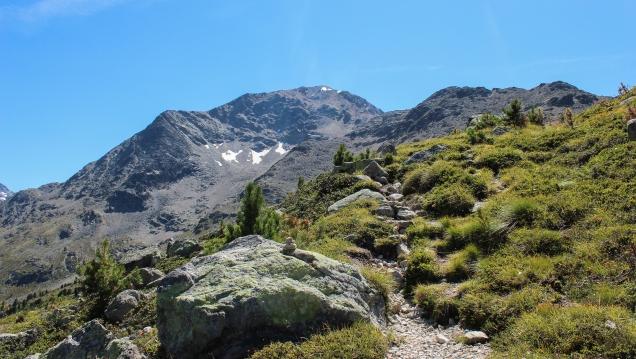 Schlussaufstieg auf den Muot Dadains (Bild: bergwelt.me).