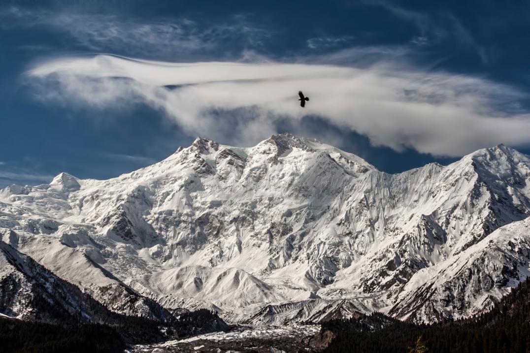 Nanga Parbat / Bild: Ahmed Sajjad Zaidi, wikimedia