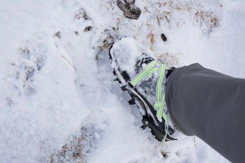 Mit den 6 Point Grödel unterwegs im Alpstein.
