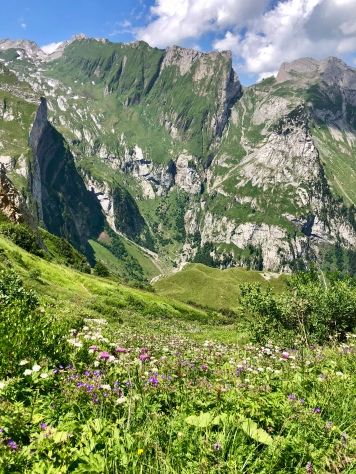 Blick Richtung Leiterfeld mit dem Weg zum Mesmer.
