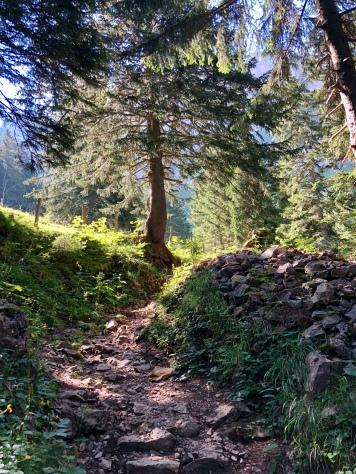 Bergweg Richtung Bogartenlücke.