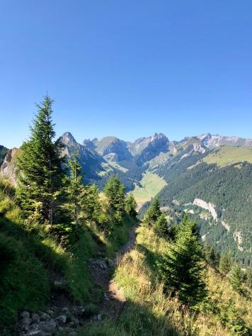 Blick auf den Alpstein.