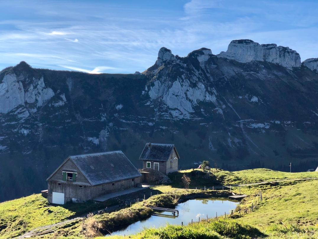 Auf der Alp Siegl.